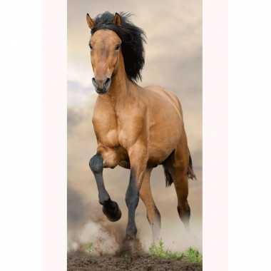 Paard strand/bad handdoek 70 x 140 cm groot